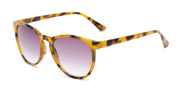 The Best Multifocal Reading Sunglasses